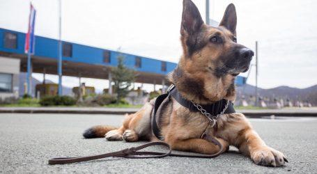 HVALA TI RASKA! Uginula je njemačka ovčarka, najusupješniji pas za detekciju duhana