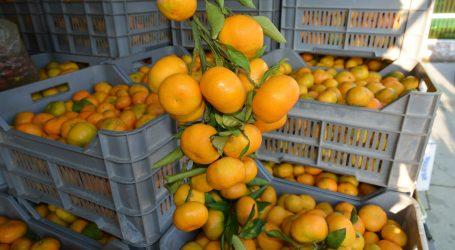 Recepti za ljepotu uz odlična svojstva mandarine i naranče