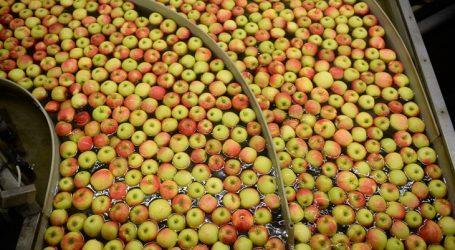 Zabranjuje se uvozno voće tretirano insekticidom klorpirifosom