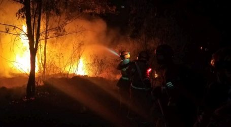Devetnaest mrtvih u šumskom požaru u Kini
