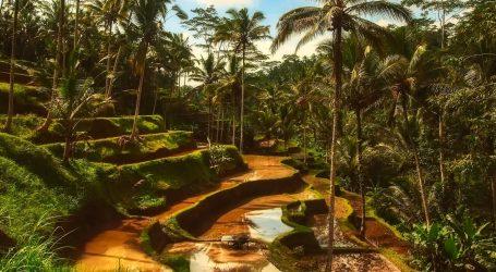 Evakuiraju se stotine europskih turista s Balija