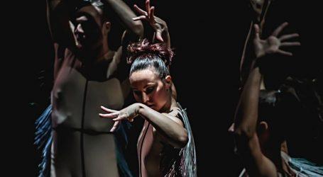 Ansambl Baleta HNK Ivana pl. Zajca svima čestitao Svjetski dan plesa