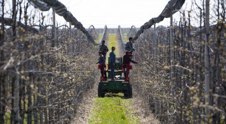 Mađarska i Srbija otvorile granicu za radnike pograničnih područja