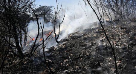 Spaljivao korov pa uzrokovao požar na više od 20 hektara zemljišta
