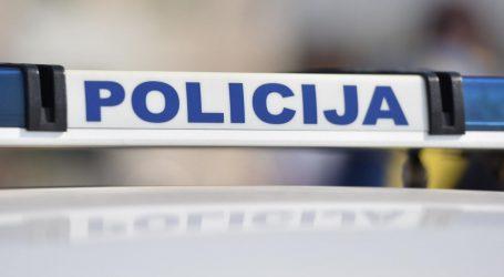 U šumi na području Gornjeg Jelenja prije mjesec dana pronađen mrtav muškarac, umro je nasilnom smrću