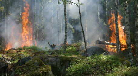 Gori šuma oko nuklearke u Černobilu, zračenje vatrogascima otežava posao