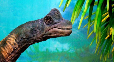 U Argentini pronađen fosil jednog od posljednjih megaraptora na planetu
