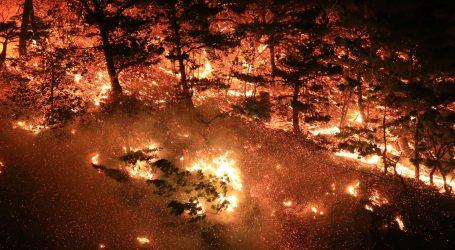 AUSTRALIJA: Preko 400 umrlih od posljedica dima uslijed šumskih požara