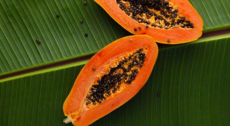 Nešto je sumnjivo u Tanzaniji: Koza i papaja pozitivne na koronavirus