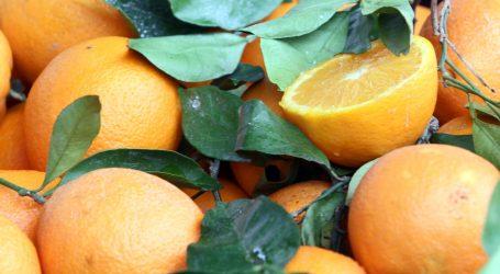 Tonik od naranče je dobar za tjeme i svjetliju kosu