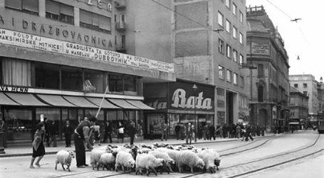 STARI ZAGREB: Ovce u pohodu na Ilicu i druge zaboravljene fotografije Zagreba