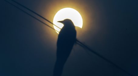 U pomrčini Sunca uživali promatrači u Africi, Aziji i na Bliskom istoku