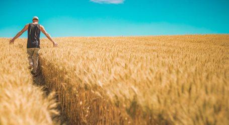 Novi život za okorjele prijestupnike – mogu postati farmeri
