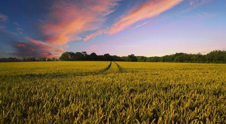 EK produžila moratorij strancima na kupnju poljoprivrednog zemljišta u Hrvatskoj
