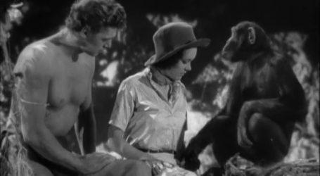 Kako je Maureen O'Sullivan postala Tarzanova Jane