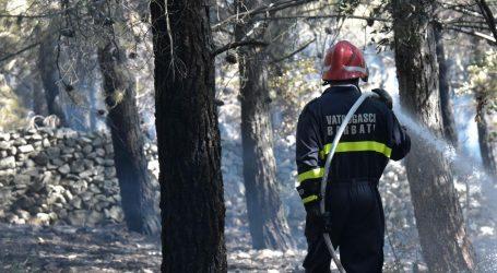 Požar borove šume na Zrću gasi se s tla i iz zraka