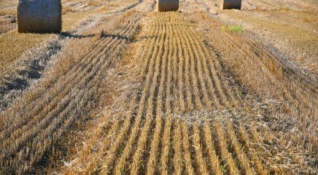 HGK: Izvoz poljoprivrednih i prehrambenih proizvoda porastao pet posto