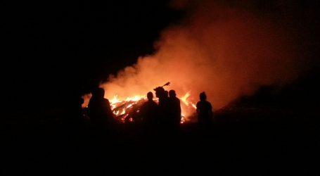 Tri milijarde životinja stradale u australskim požarima
