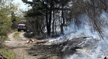 Šumski požari u Rusiji i francuskoj regiji Gironde