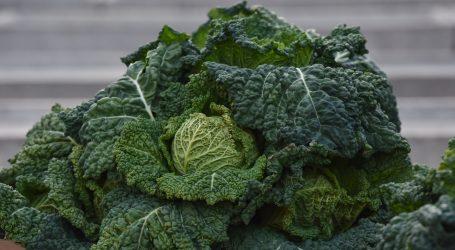 Američka tvrtka prerađuje višak hrane u nove namirnice