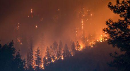 Šest mrtvih, devet hospitaliziranih u šumskim požarima u Ukrajini