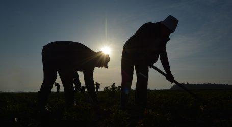 Kuba pozvala građane na rad u urbanim vrtovima