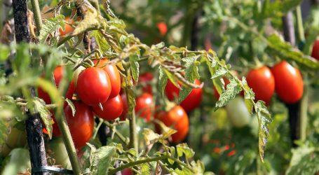 Nova vrsta urbanih farmi poziva građane na povratak prirodi