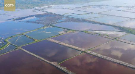 Tisuće ptica preletjelo kinesko jezero Janhu, pogledajte ove predivne prizore