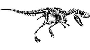 Lovci na fosile otkrili kosti nepoznatog dinosaura, srodnika T.Rexa