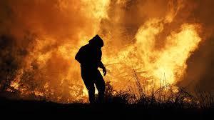 Požari pustoše Kalifornijom gdje vladaju pasje vrućine