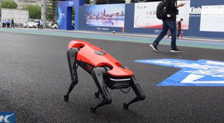 Kinezi usavršili popularnu američku ideju robota-psa