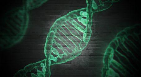 INTERVIEW Peter Underhill: Genetičar na tragu podrijetla naroda