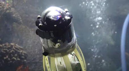 Robot-lignja uspješno prošao test u velikom akvariju