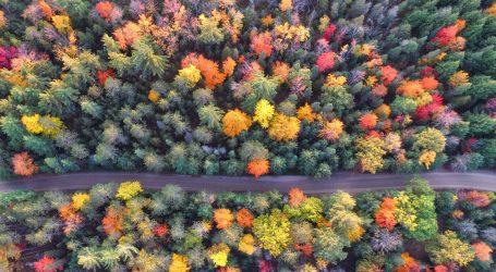 Jesenske boje krajolika u drugoj najmanjoj američkoj državi mamac za ljubitelje prirode