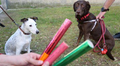 Prijatelji životinja od zastupnika traže podršku uoči izmjena Zakona o eksplozivnim tvarima