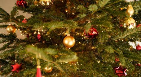 Posječeno božićno drvce koje će se postaviti ispred američkog Kongresa