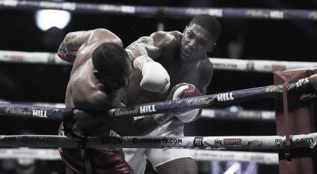 Joshua vs. Fury: Počeli pregovori za 'Bitku za Britaniju'