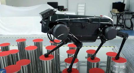 Usavršeni robot-pas Jamoca može trčati i skakati