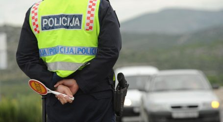 Vozači na području Istre naletjeli na tri srne i jednog psa
