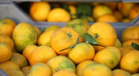 Sirup od mandarina i đumbira je odlična zaštita od prehlade