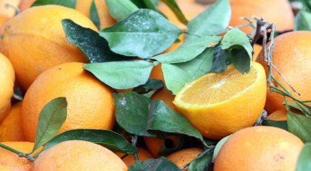 Kućni tretman: Piling za lice od mandarine i naranče