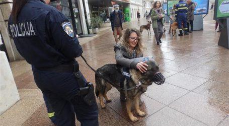 """RIJEKA Fenomenalna izložba """"Šapice na zadatku"""": Građani će moći puno naučiti o radnim psima"""
