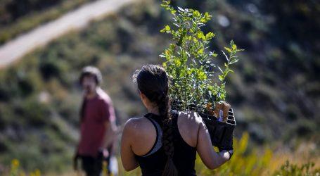 Europski parlament nagradio Boranku: Posadili 85 tisuća stabala