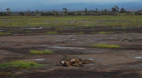 """UN: """"Kriza okoliša prijeti održivosti čovječanstva, milijun vrsta već je pred izumiranjem"""""""