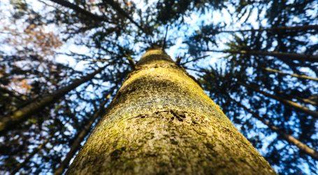 Razni projekti i aktivni građani važni su za očuvanje bioraznolikosti