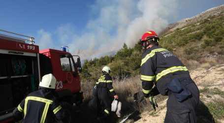 Lokaliziran požar iznad Strožanca, opožareno oko šest hektara niskog raslinja i borove šume