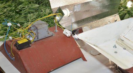 Krao struju s glavnog elektrovoda za uzgajanje konoplje u improviziranom laboratoriju u stanu