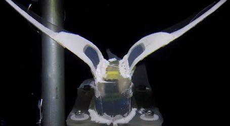 Istraživanje dubina: Kineski znanstvenici testirali neobičnog robota u obliku ribe puža