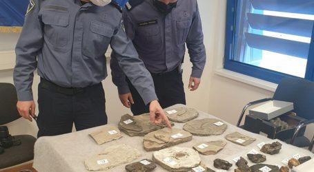 """Policija na granici zaplijenila vrijedne fosile: """"Zbirka je zanimljiva ilegalnim trgovcima i kolekcionarima"""""""