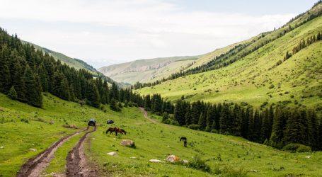 """Ministar zdravstva u Kirgistanu: """"Koristit ćemobiljni tonik u liječenju koronavirusne bolesti. Pomaže korijen endemske biljke"""""""